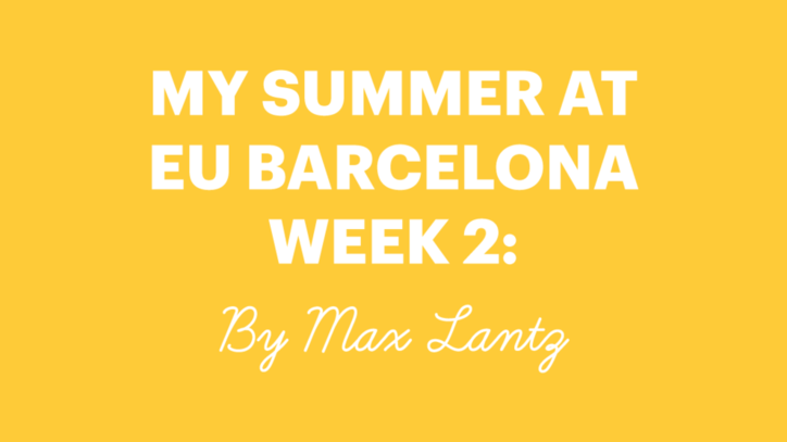 EU International Summer School 2017 - Week 2