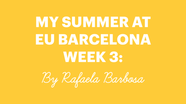 EU International Summer School 2017 - Week 3